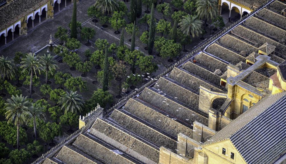 patio-naranjos-cordoba-mezquita