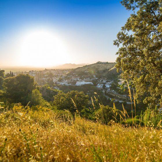 fantásticas vistas de Granada