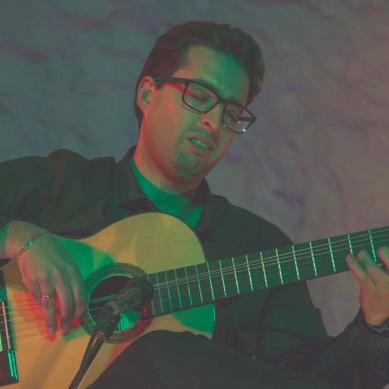 Tablao flamenco en Granada. Guitarrista