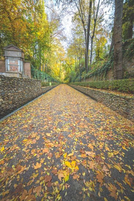Bosque de la Alhambra en otoño